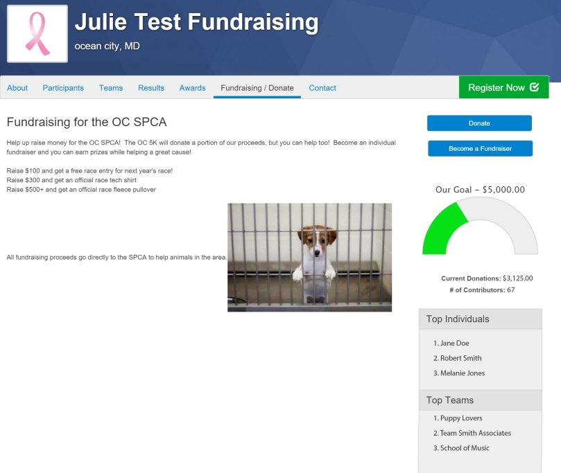 fundraising_Screen_mockup